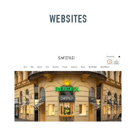 Concept and structur websites